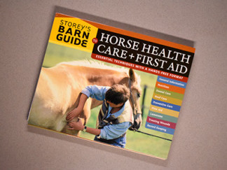 Robin Catalano freelance writer editor horse book pets animal care