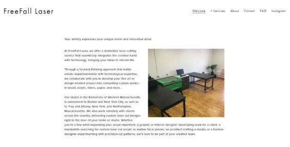 Robin Catalano website copywriter creative copywriting for websites FreeFall Laser