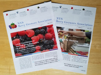 Robin Catalano newsletter copywriter communications manager NYS berry growers RS