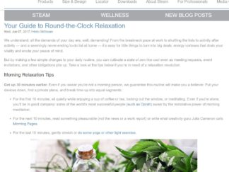 Robin-Catalano-blogger-branded-content-marketing-Mr-Steam-blog-post