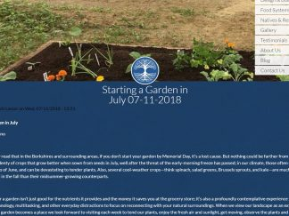 robin_catalano_blogger_content_marketing_starting_a_garden_in_july
